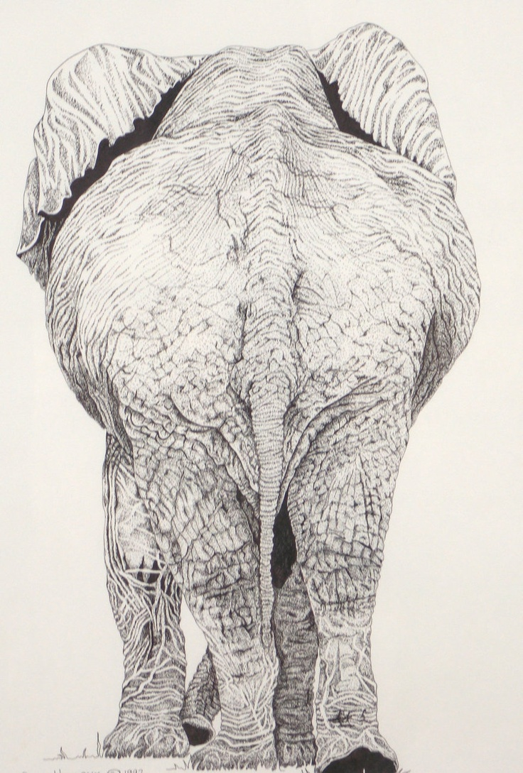 Elephant Backside Pen and Ink Original Animal Art Africa Matted and Framed  I do love my Elephants