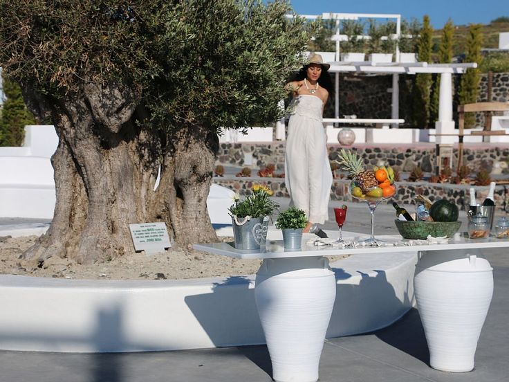 Our, more than 1000 yesra old, olive tree. - Oia villa rental