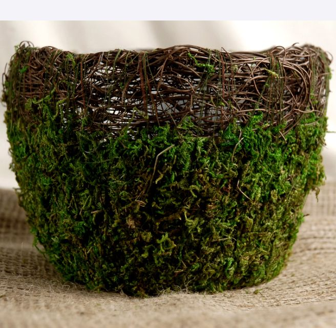 """7""""  Preserved Wicker & Moss Covered Round Pot $5.99 each     stump-tops with flowers/transfer to loft tables?"""