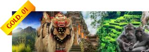 Bali Tour - Gold 1 - Package US$50