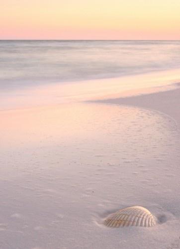 Blush at the Beach.