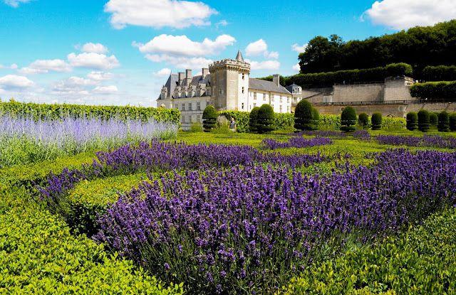 France, Loire Valley - Château de Villandry V (Gardens)