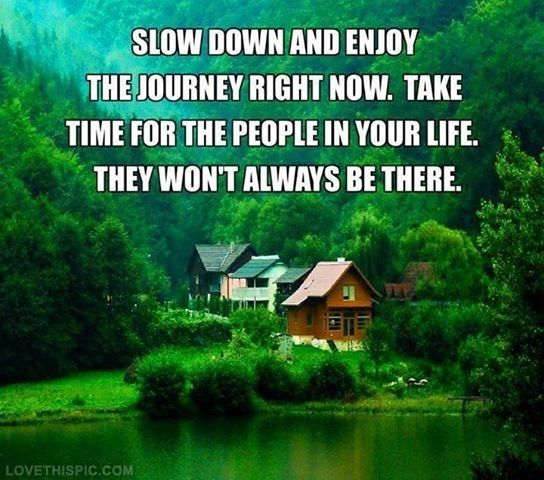 slow down and enjoy the journey life quotes quotes quote life quote