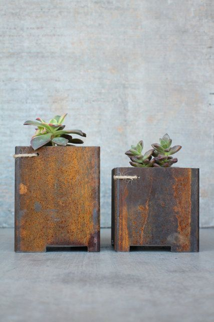 "Just ordered these! 4"" x4"" Steel Indoor Outdoor Garden succulent metal planter from IronandDribble on Etsy. LOVE THEM!"