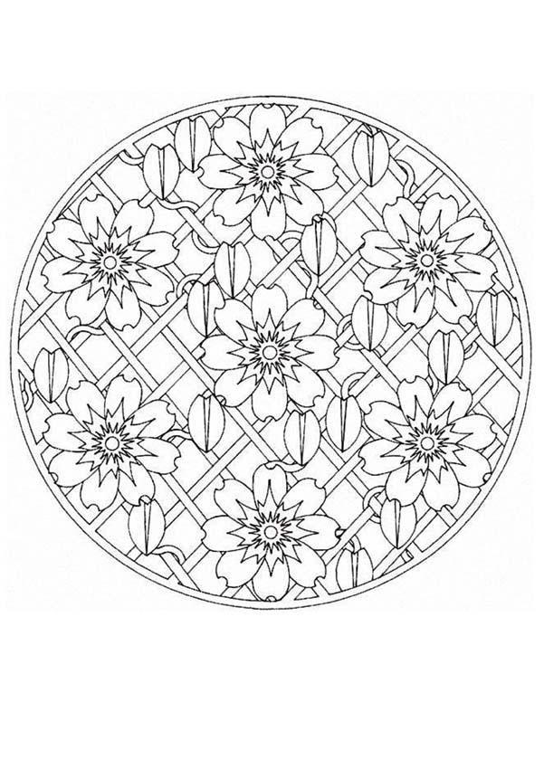 Mandala  66 worksheet