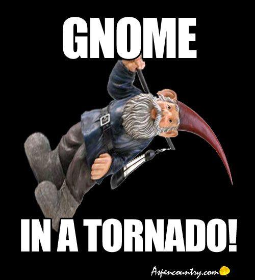 Funny Gnome Meme: Gnome in a Tornado!