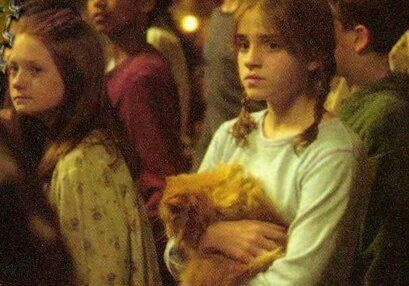 Hermione, looking worried, with Crookshanks and Ginny in the background. I can't recall this scene but she looks adorable.
