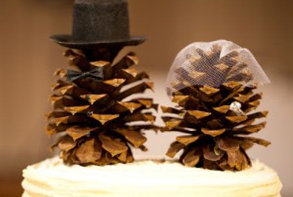 Top Ten Minimalist Wedding Ideas - Rustic Wedding Chic,  Mr & Mrs Pines... o r the cone heads...LOL!