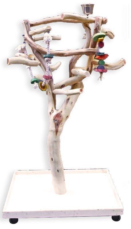 Manzanita Parrot Tree Bird Stand Toy Play Gym like Java Wood Natural SB60XL3 - http://pets.goshoppins.com/bird-supplies/manzanita-parrot-tree-bird-stand-toy-play-gym-like-java-wood-natural-sb60xl3/