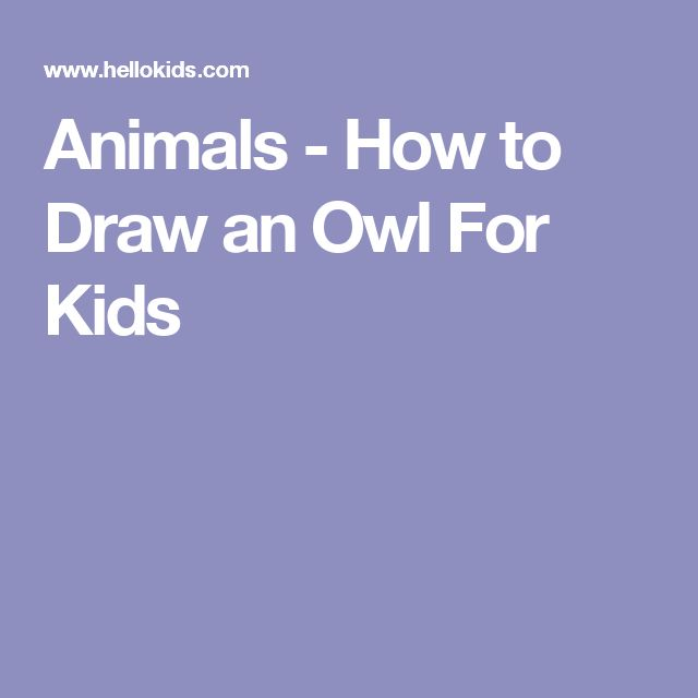 Animals - How to Draw an Owl For Kids
