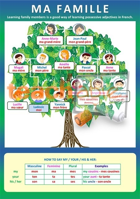 best french family images core french colourful poster to illustrate family members in french as well as possessive adjectives