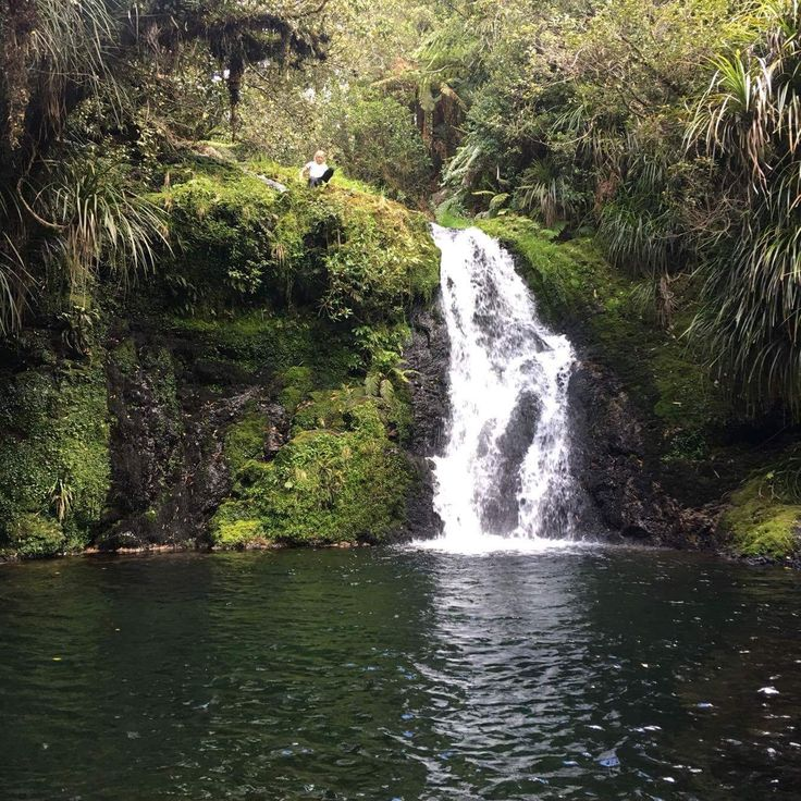 Whataroa Falls, Papamoa