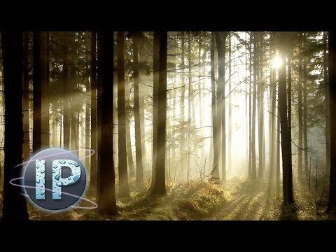 Adobe Photoshop Elements Sun Ray Effect Photoshop Elements Tutorial 10 11 12 - YouTube