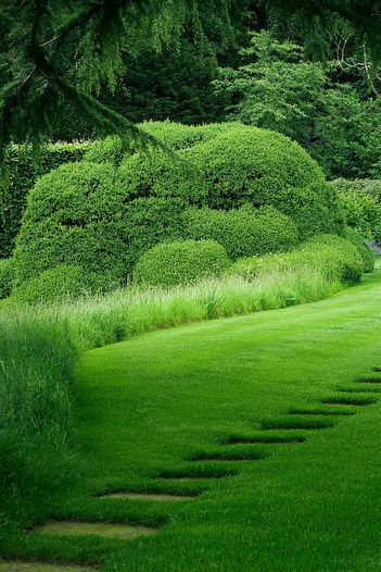Green Collection, Green Home, Hedges Gardens, Green Gardens, Green Green, Country Gardens, Step Stones, Gardens Paths Edging, Stepping Stones