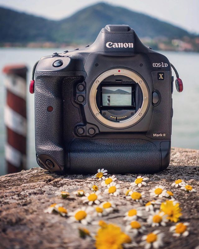 Love This Canon 1dx Mark Ii Photographylife Photo By Behindthelapse Canon Camera Camera Photography Camera Lenses Canon