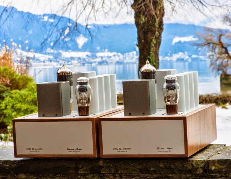 Mono and Stereo High-End Audio Thomas Mayer SE 300B amplifier NEW Audiophile Vacuum Tube