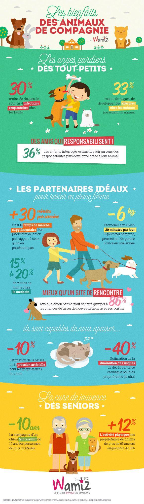 Les bienfaits des animaux de compagnie pour les humains en une infographie ! - Société - Wamiz