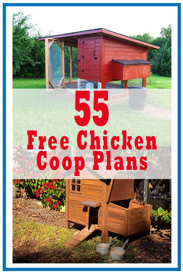 55 Diy Chicken Coop Plans For Free Pampered Chicken Mama
