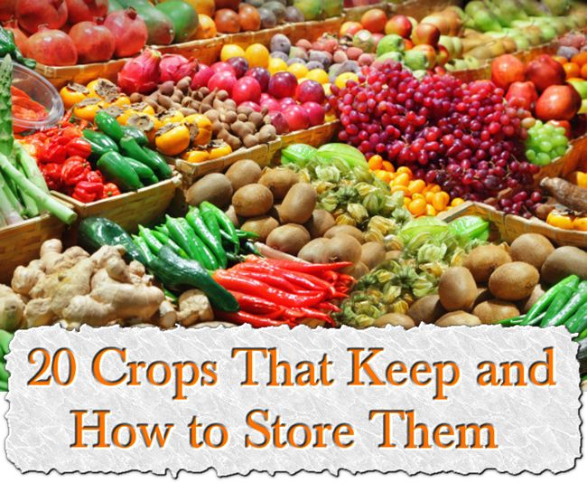 20 Crops That Keep and How to Store Them