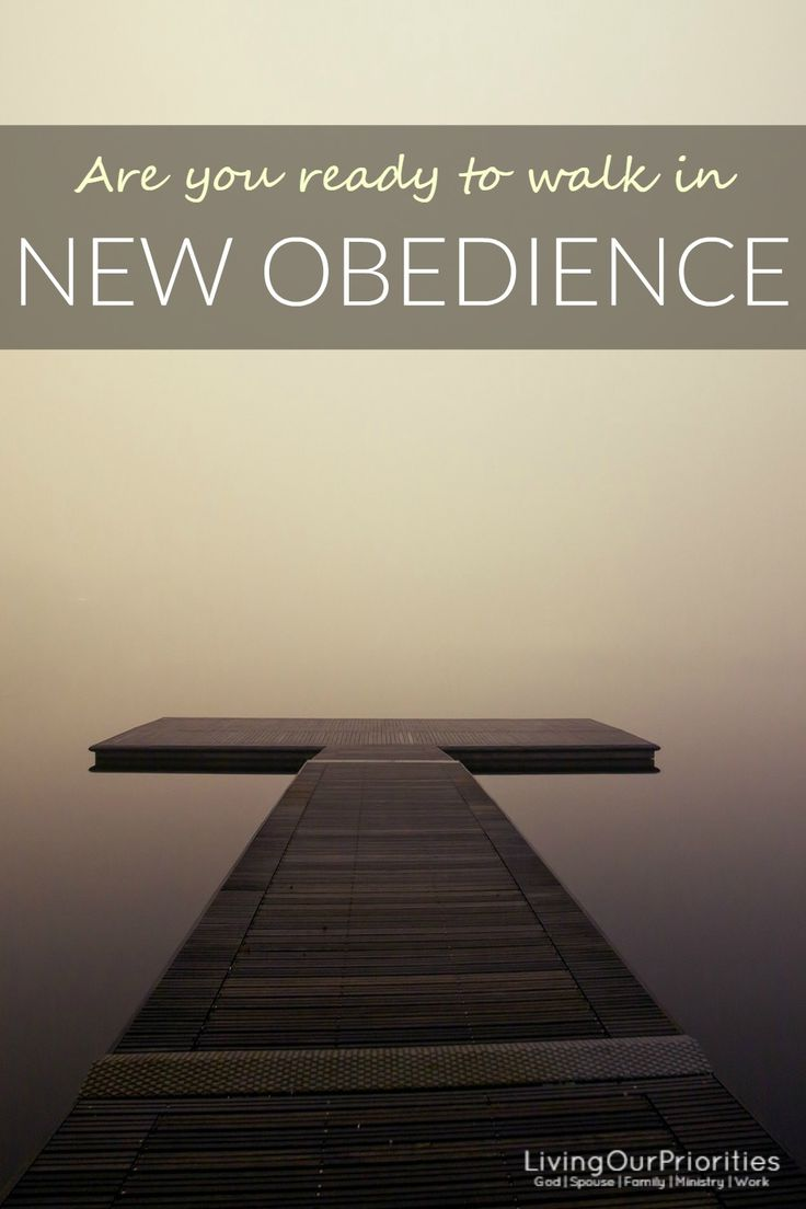 Is there a new level of obedience that God has called you to that you have delayed?