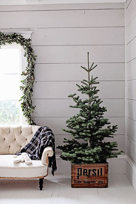 Dreamy Whites: French Farmhouse Christmas   Love The Natural Tree