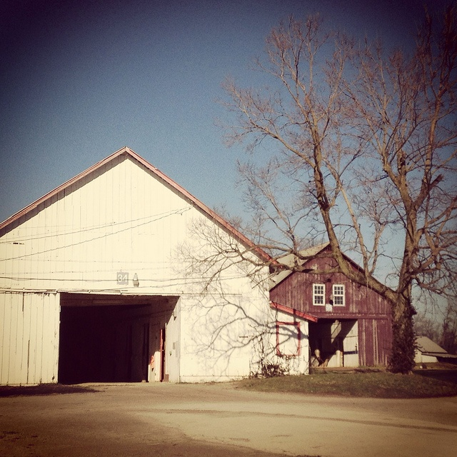 72 Best Images About Kentucky On Pinterest