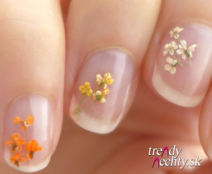177 best nails images on pinterest nail designs dried flowers 177 best nails images on pinterest nail designs dried flowers and flower nails prinsesfo Gallery