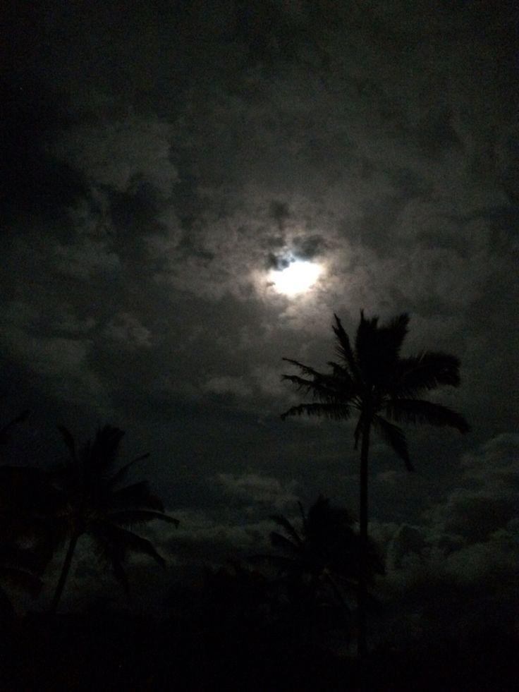 Moonlight. Feels right.