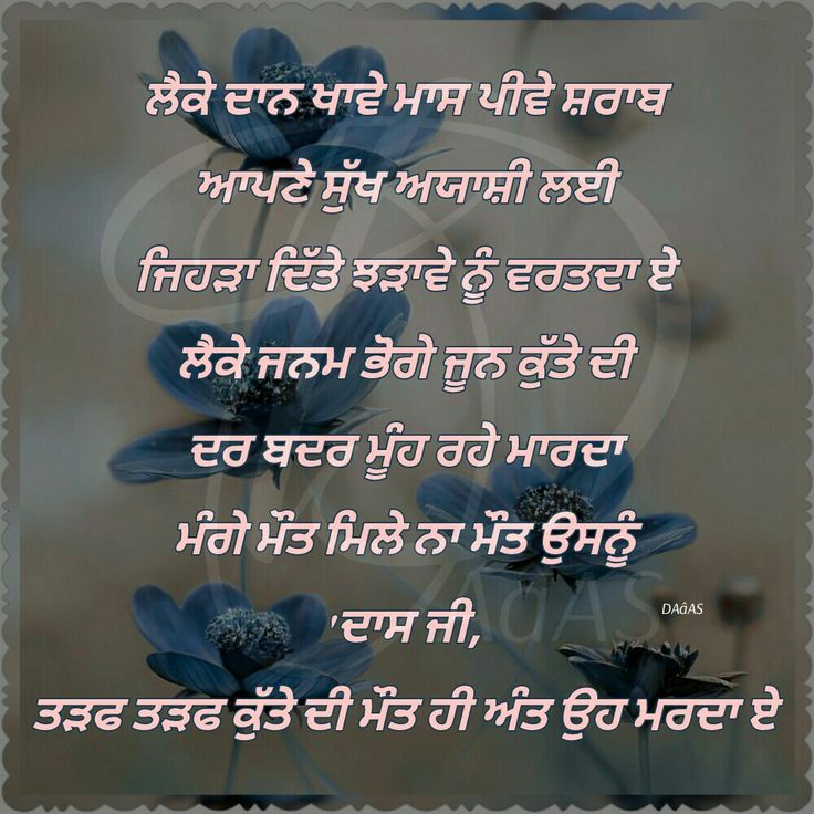 Quotes About People Who Notice: 1000+ Punjabi Quotes On Pinterest