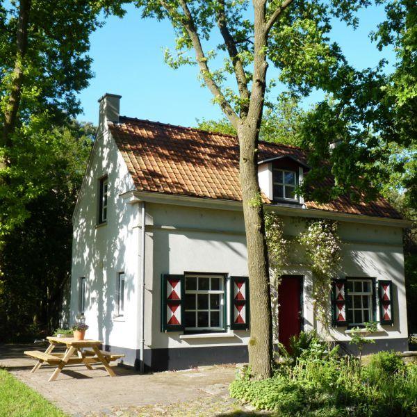 Slapen op de Heide, Noord-Brabant | Bijzonder vakantiehuis in het bos