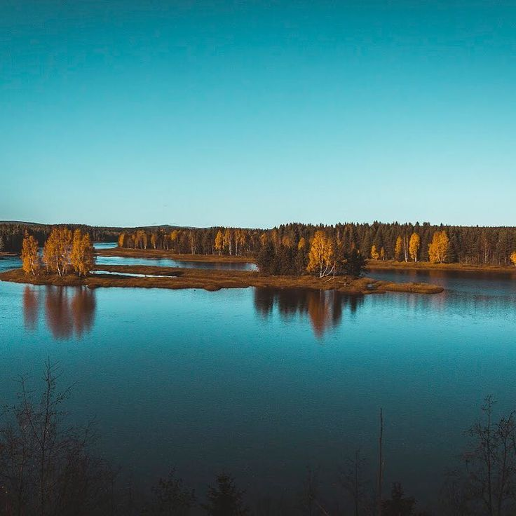 Looking through the viewfinder makes me appreciate the things I have around me       #ig_landscape #ig_nature #fall #autumn #landscape #landscapephotography #canon #canon70d #canonlovers #instalandscape #sweden #visitsweden #photographer #ig_color #instadaily #shotoftheday