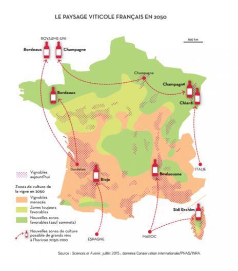 La paysage viticole en 2050