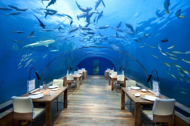 Hurawalhi, Maldives - Get Prices for the Stunning Hurawalhi