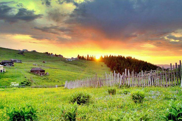 Figanoy Plateau ; Maçka; Trabzon city, Turkiye