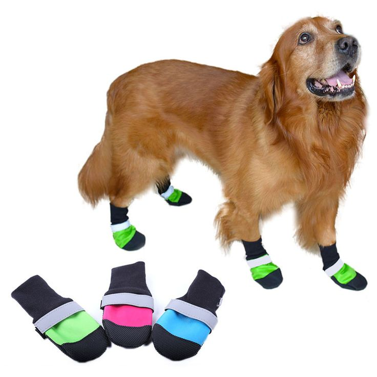4pcs/set Pet Dog Shoes 3Color Ultra-Wear Oxford Fabric Large Dog Boots Non-slip Leather Waterproof Protective Rubber Rain Boots // FREE Shipping //     Buy one here---> https://thepetscastle.com/4pcsset-pet-dog-shoes-3color-ultra-wear-oxford-fabric-large-dog-boots-non-slip-leather-waterproof-protective-rubber-rain-boots/    #pet #animals #animal #dog #cute #cats #cat