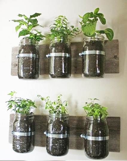 7 best Decorative Clear Glass Plant Pots images on Pinterest ...