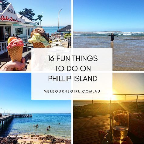 16 fun things to do on Phillip Island