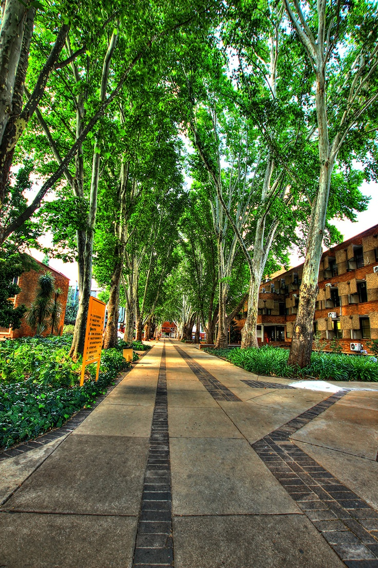 Lovers Lane; NWU Campus; Potchefstroom