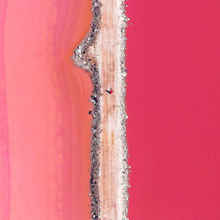 Le Lac Hillier en Australie est tout rose (1)