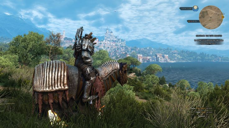 Me messing around with the mod AMM. Came out with an awesome screenshot of Toussaint. #TheWitcher3 #PS4 #WILDHUNT #PS4share #games #gaming #TheWitcher #TheWitcher3WildHunt