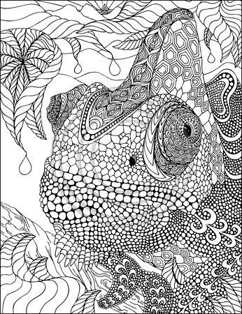 51 best Chameleons for Creative Coloring! images on Pinterest ...
