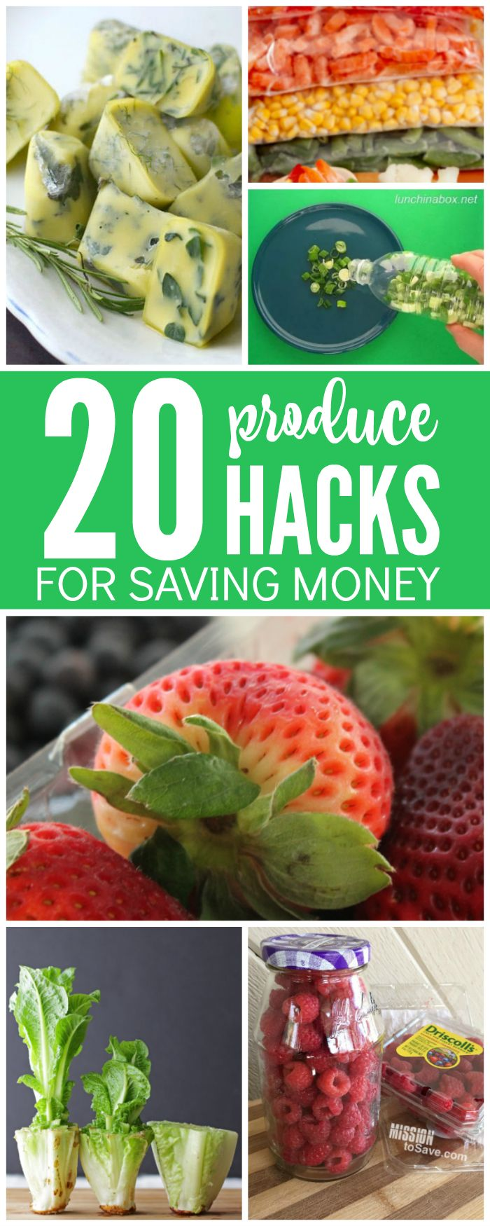 Check out these Top 20 Produce Hacks for Saving Money today! You will love these great hacks, you can save your produce for longer and spend less money on it!