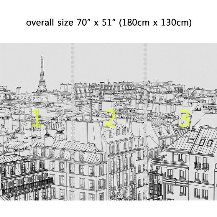 Wall Mural Paris Skyscape, Peel and Stick Repositionable