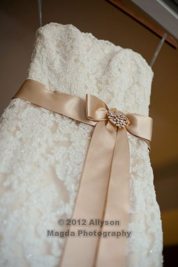 Wedding dress sash; pretty idea.  look for brooch. Ali needs a pretty sash for her dress.  Perhaps a brooch would add sparkle.