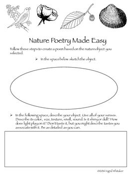 Nature Poetry Writing Made Easy : Following the steps here anyone, even the most reluctant writers, can write a beautiful poem about nature. Ask students to bring in an object collected from nature, go out to the school grounds and write will observing the environment, or provide students with a collection of nature objects you have selected.