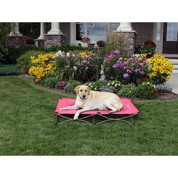 Carlson Pet Portable Pup Travel Dog Cot & Reviews | Wayfair