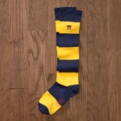 ✔ Striped Sock: Navy Socks, Rugby Socks, Striped Sock, Homes, Striped Gold