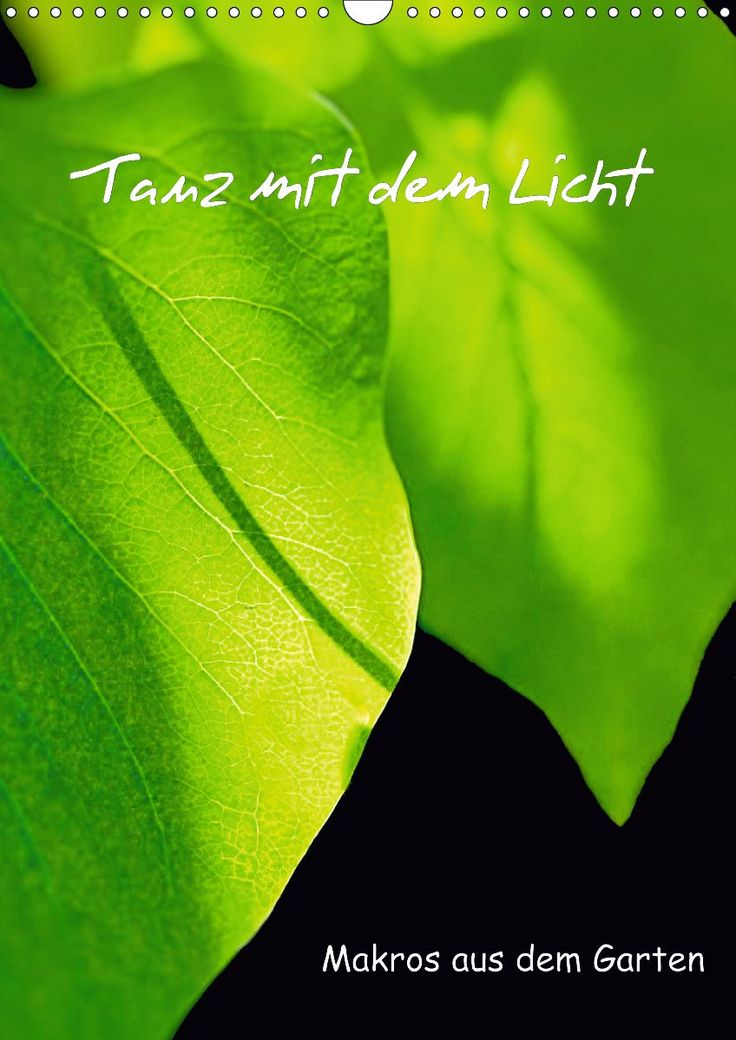 Dance with the light - calendar with my favourite macros of beautiful garden plants
