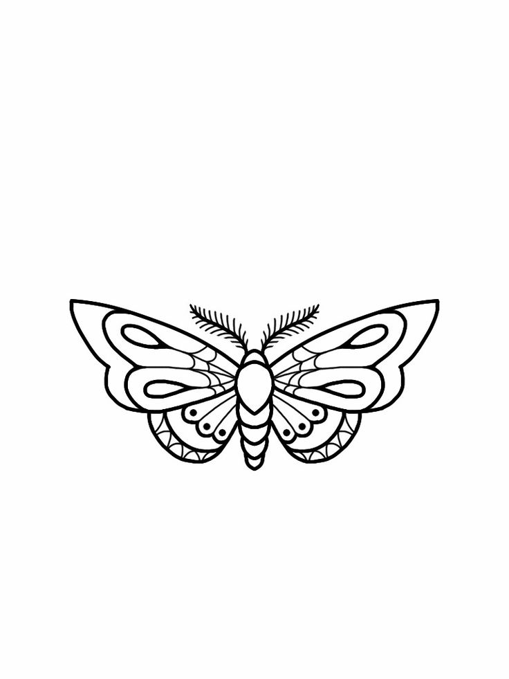 Tattoo Flash Line Drawing Converter : Moth tattoo flash design … tat pinterest