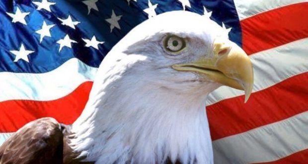 الخارجية الأمريكية تعلق على تأشيرات السفر نمساوى In 2021 Bald Eagle Animals Eagle